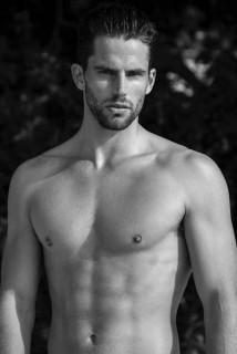 Aaron Wingreen Photo